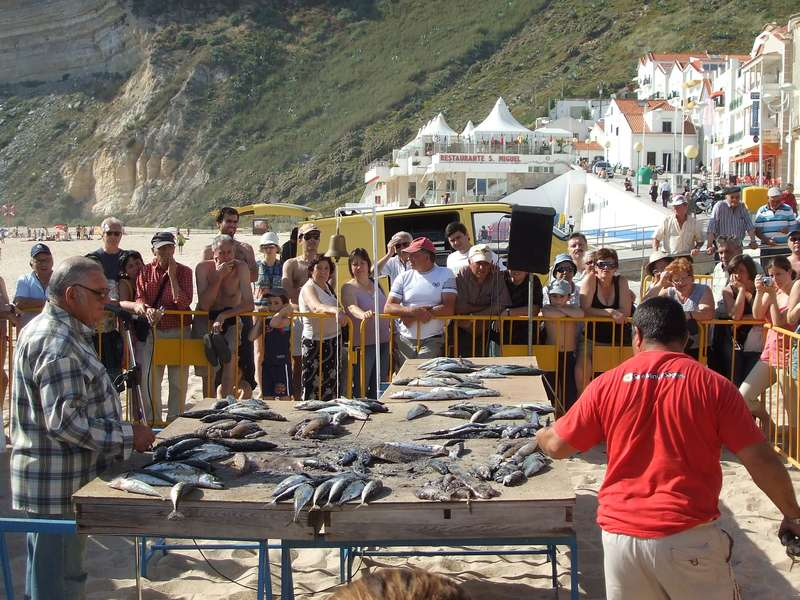 Casa Cantiga actieve vakantie portugal 14 fresh fish market at the beach