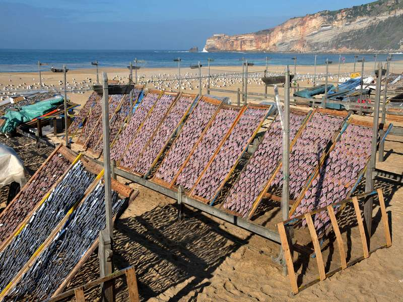 Casa Cantiga strandvakantie portugal self catering B&B 06