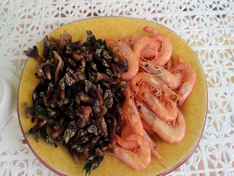 Casa Cantiga strandvakantie portugal self catering B&B 07