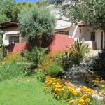 férias com filhos pequenos num pequeno resort Alcobaça_Casa Palmeira 1