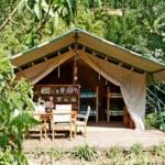 férias de glamping perto de Nazaré_safari tenda Bambu
